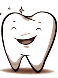 牙外傷的分類及治療原則